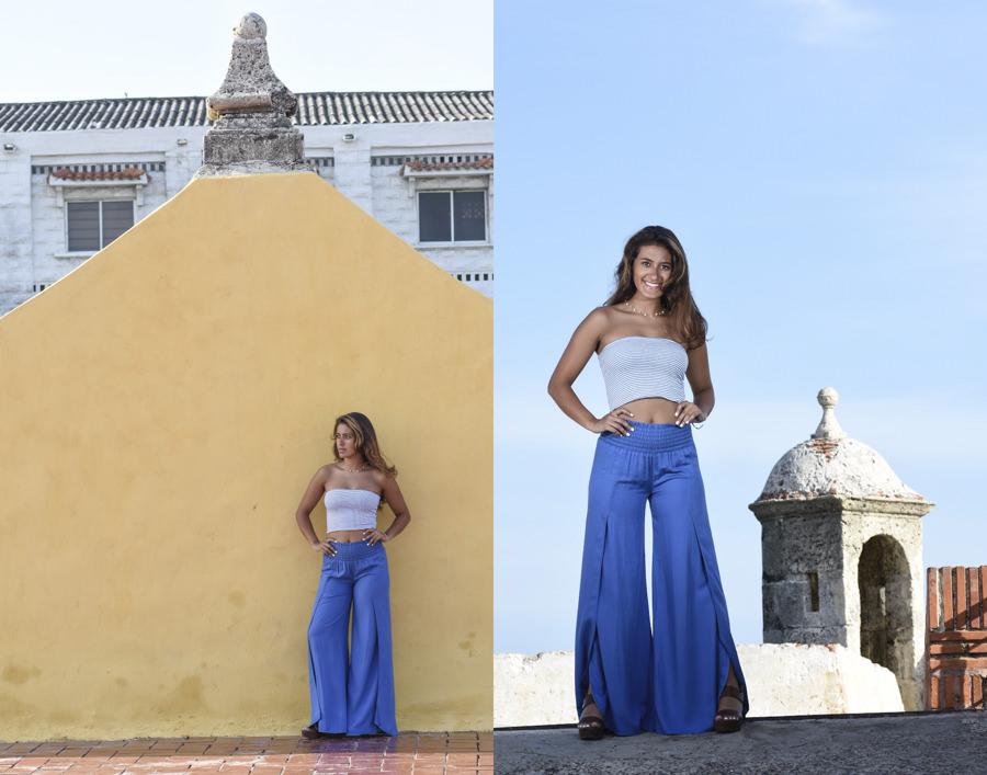 Cartagena y sus baluartes